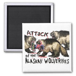 Alaskan Wolverines by Mudge Studios Square Magnet