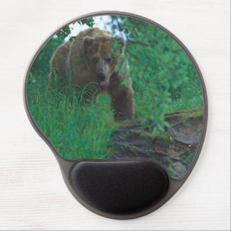 Alaska's grizzly bear gel mousepad