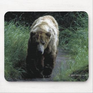 Alaska's grizzly bear  mousepad