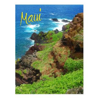 Alau Island, Maui Postcard