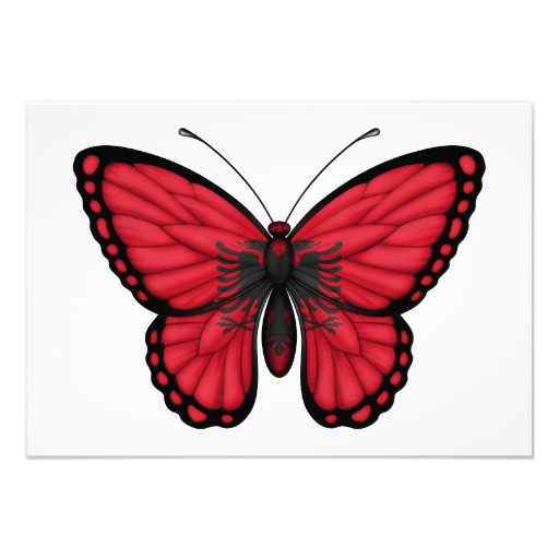 Albanian Butterfly Flag Personalized Announcements
