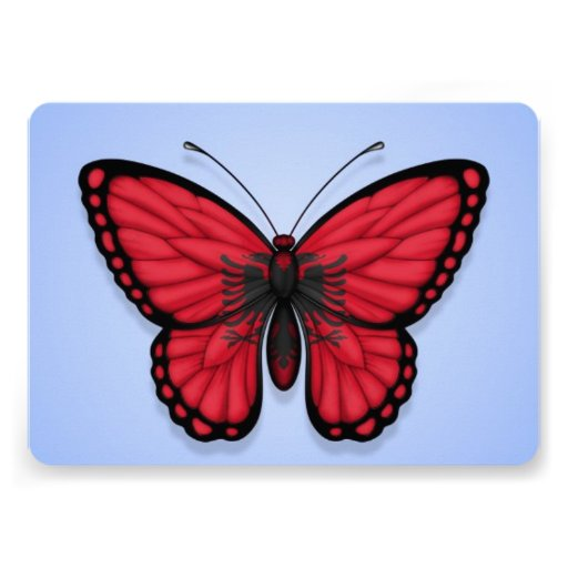 Albanian Butterfly Flag on Blue Personalized Announcement