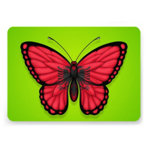 Albanian Butterfly Flag on Green Invitations