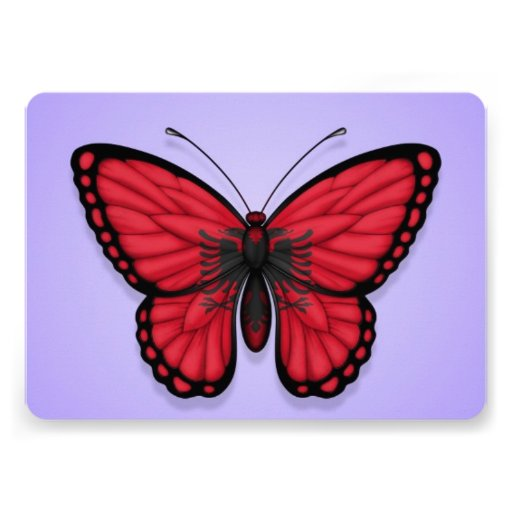 Albanian Butterfly Flag on Purple Custom Announcement