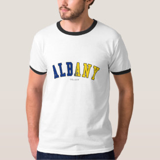 Albany in New York state flag colors T-Shirt
