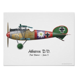 Albatros D.V. ww1 German Fighter Plane Bäumer Poster