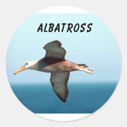 Albatross Flying Round Sticker