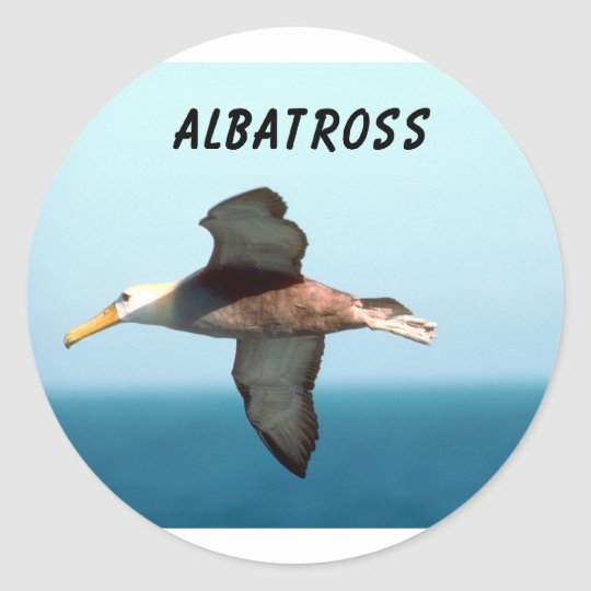 Albatross Flying Round Sticker