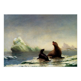 Albert Bierstadt painting, Seals Poster