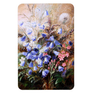 Albert Dürer Lucas: Harebells and Centaury Rectangular Photo Magnet