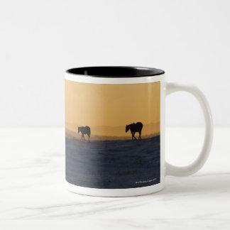 Alberta, Canada 3 Two-Tone Coffee Mug
