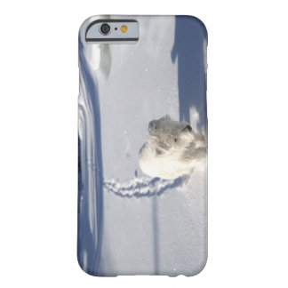 Alberta, Canada Barely There iPhone 6 Case