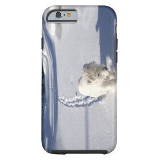 Alberta, Canada Tough iPhone 6 Case