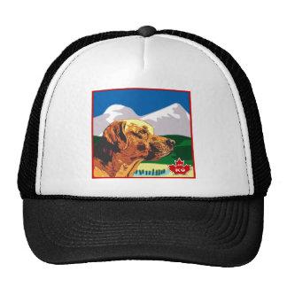 Alberta Labrador Hats