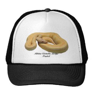 Albino Genetic Stripe Pastel Hat