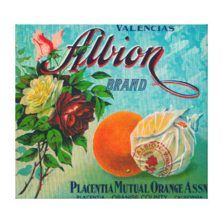 Albion Brand Citrus Crate Label Canvas Print