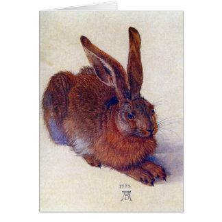 Albrecht Durer - Field hare Cards