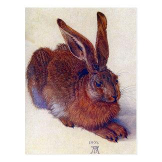 Albrecht Durer - Field Hare GC Postcard