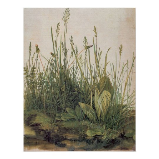 Albrecht Durer Great Piece of Turf Poster
