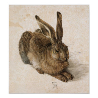 Albrecht Dürer - Junger Hase Young Hare 1502 Posters