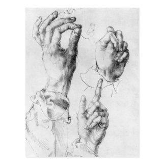 Albrecht Durer Sketch Postcard