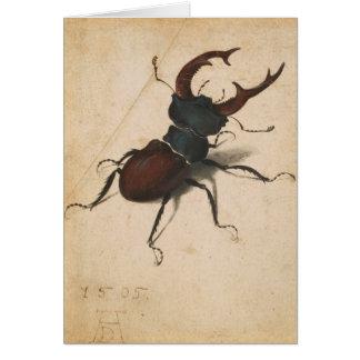 Albrecht Durer Stag Beetle Renaissance Vintage Art Card