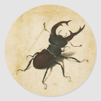 Albrecht Durer Stag Beetle Renaissance Vintage Art Round Sticker