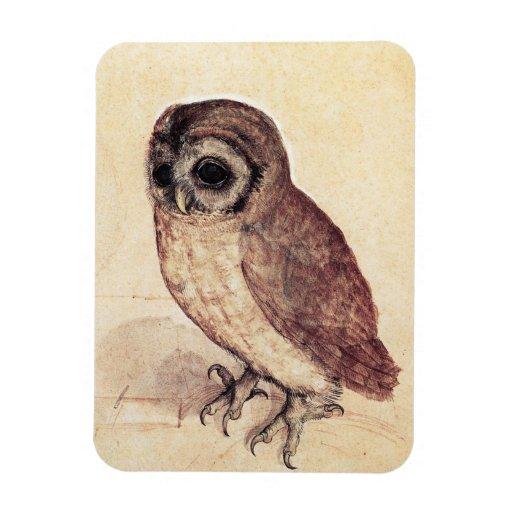 Albrecht Durer The Little Owl Magnet