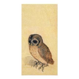 Albrecht Durer The Little Owl Photo Card Template