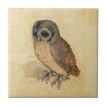 Albrecht Durer The Little Owl Small Square Tile