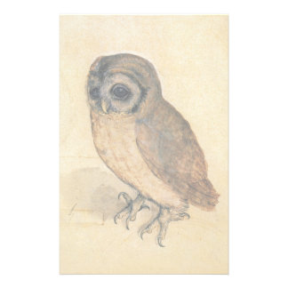 Albrecht Durer The Little Owl Stationery