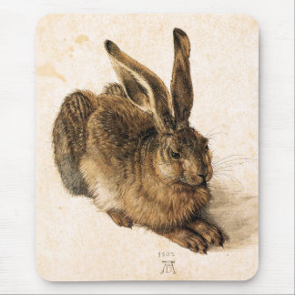 Albrecht Durer Young Hare Mouse Pad