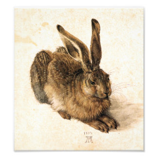 Albrecht Durer Young Hare Photographic Print