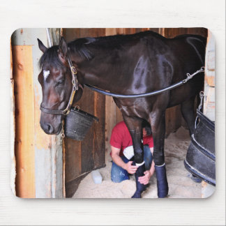 Alcolite- Horse Haven Barns at Saratoga Mouse Pads