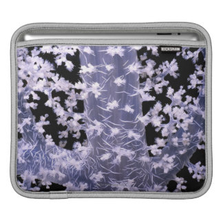 Alcyonarian Coral (Dendronephthya sp.) iPad Sleeve