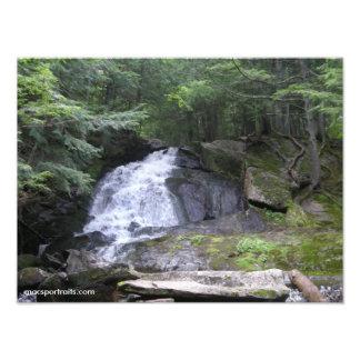 Alder Falls Photo Print