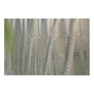 Alder Trees | Bainbridge Island, WA Wood Print