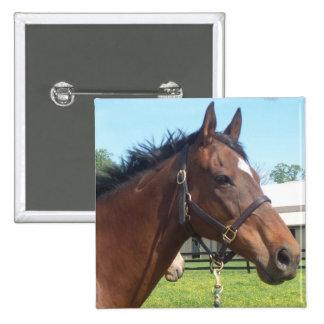 Alert Arab Horse Pin