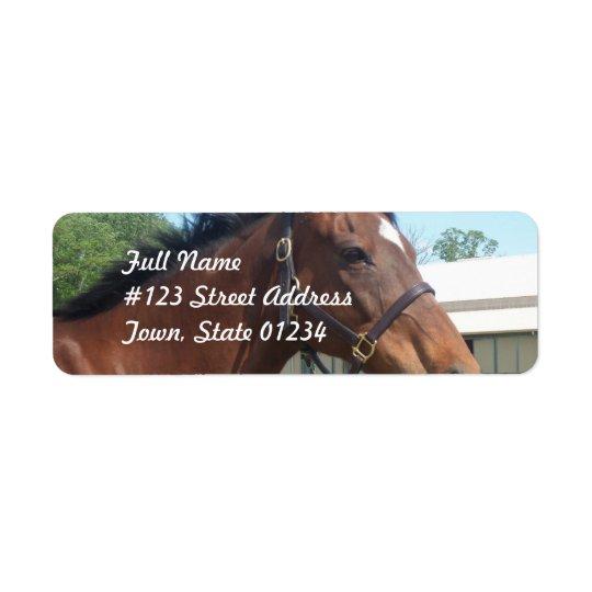 Alert Arabian Horse Return Address Mailing Label