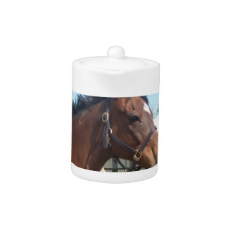 Alert Arabian Horse Teapot