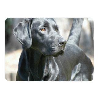 Alert Black Labrador Retriever Dog Custom Invitation