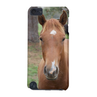 Alert Brown Horse Close-up iPod Touch (5th Generation) Covers