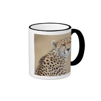 Alert Cheetah Acinonyx jubatus), Masai Mara Mugs
