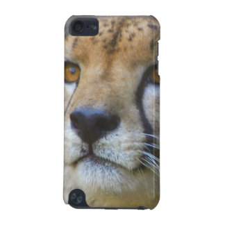 Alert Cheetah iTouch Case iPod Touch 5G Cover
