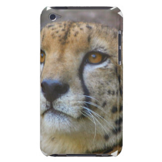 Alert Cheetah iTouch Case Barely There iPod Case