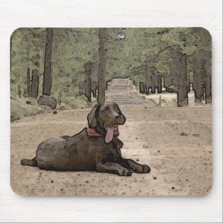 Alert Chocolate Lab On A Forest Trail Mouse Pad