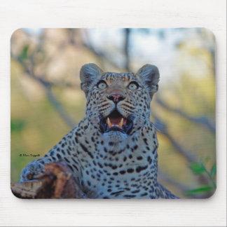Alert Leopard Mouse Mat