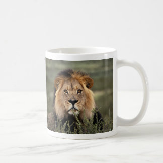 Alert Lion Coffee Mug