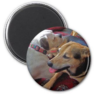 Alfie & Holly: Best Buds Magnet