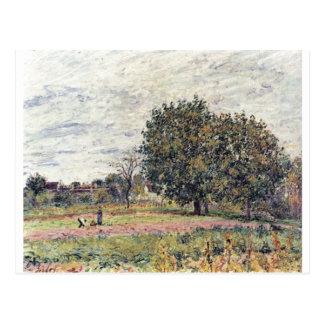 Alfred Sisley - Anfang Oktober 1882 Oil Print Postcards